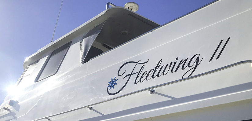 THE CAPTAIN'S FAVOURITE FEATURES ON FLEETWING II